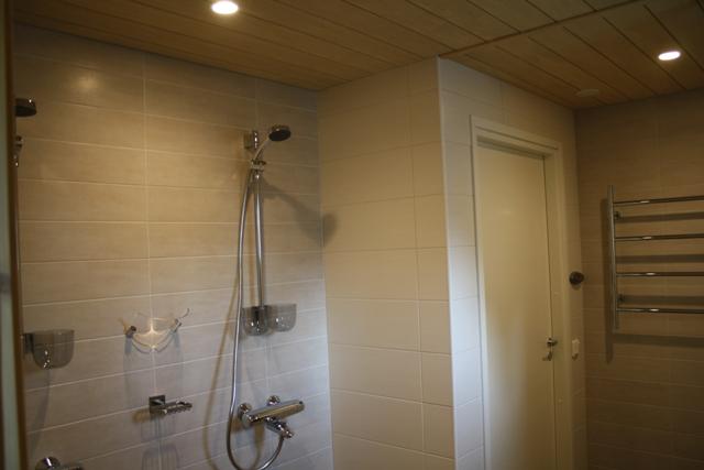 Kylpyhuoneen laatat virosta – Koti ja villieläinten